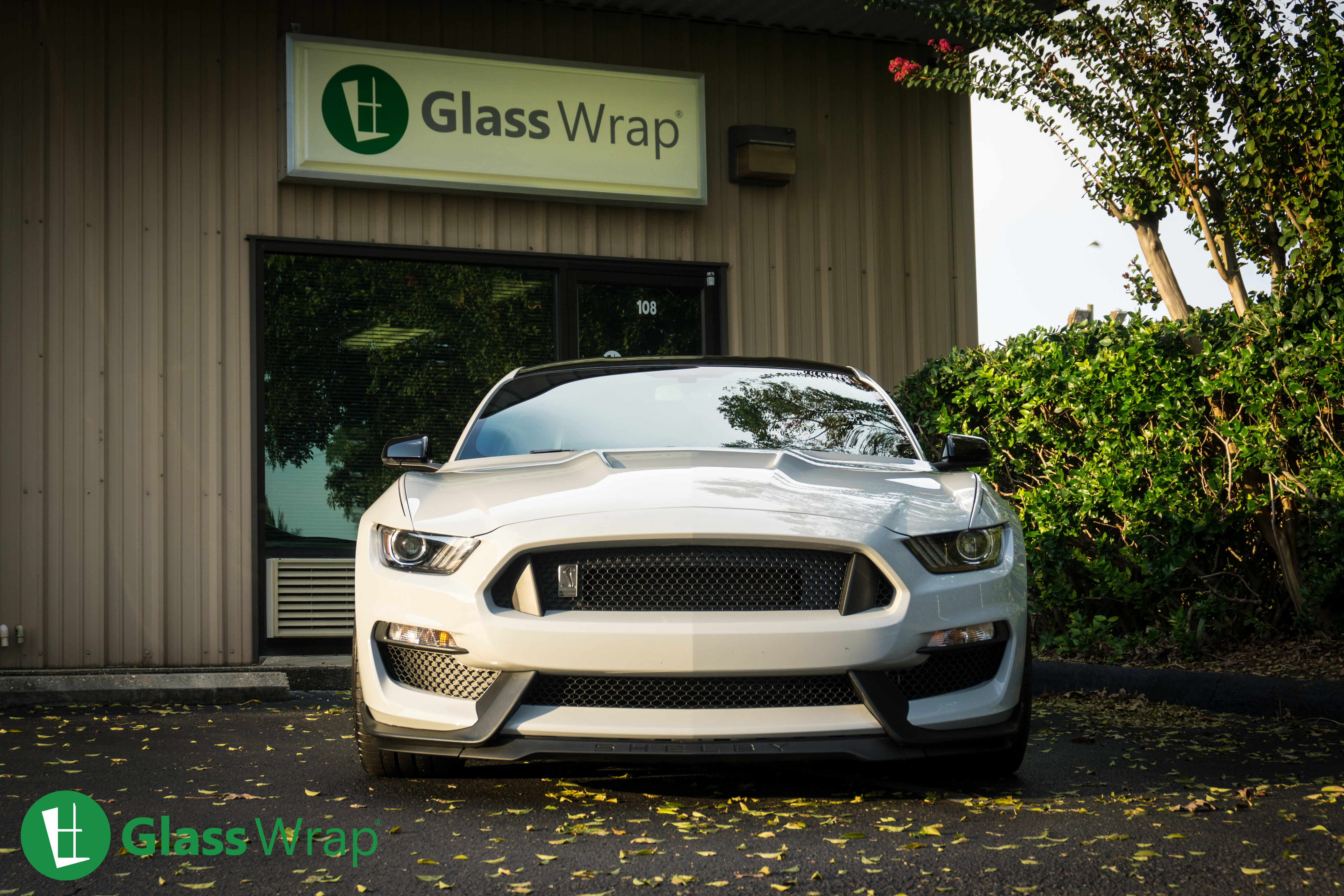 2016 Shelby GT350 Window Tinting in Pensacola by Glass Wrap